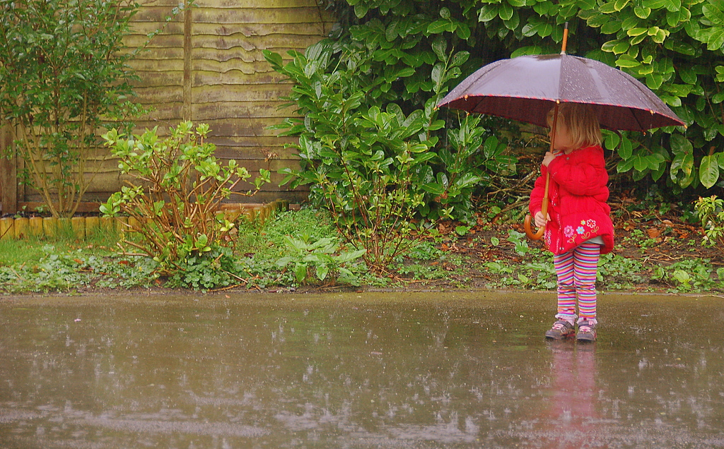 Image: A small girl holding an umbrella in the rain.
