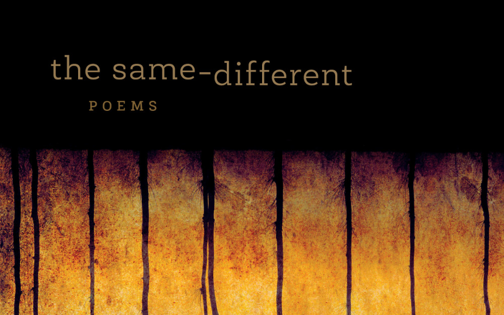 "Image: Text ""The Same Different Poems"""