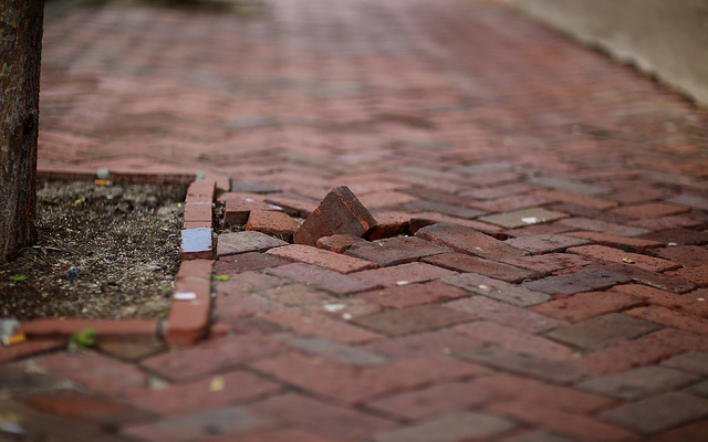 Pictured: A brick path with a single brick forced upward and out of line with the rest.