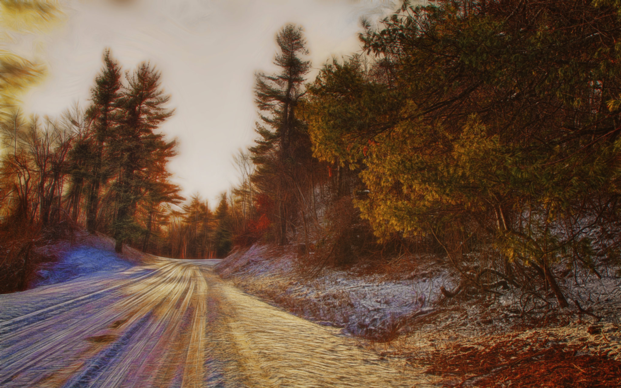 Image: A highly saturated photo of a road bending through a pine forest in winter